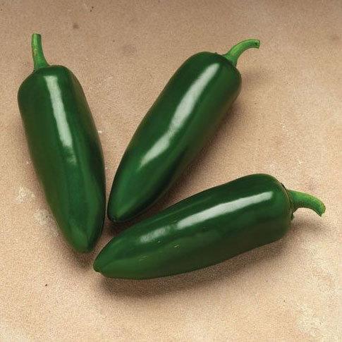 Pepper, Jalafuego