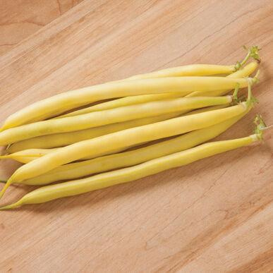 Bean, Yellow