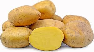 Yukon Gold Table potato