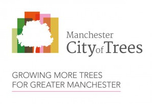 Working with City of Trees