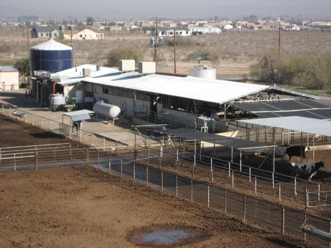 Buckeye Dairy1