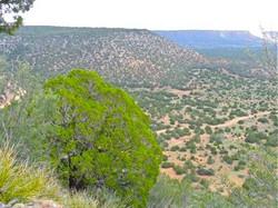 1,430 acres