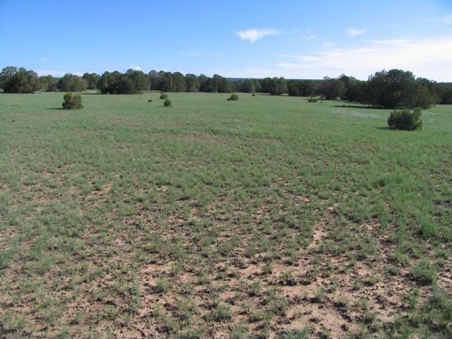 1,430 acres7