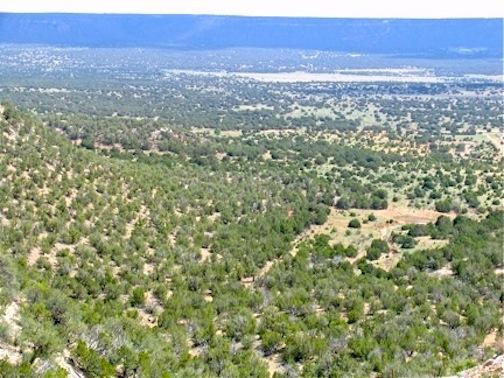 1,430 acres12