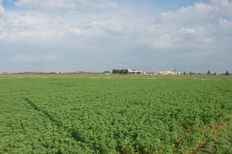 Beckett Farm8