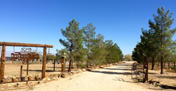 Red Rose Ranch23