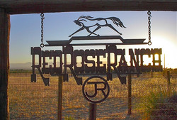 Red Rose Ranch1