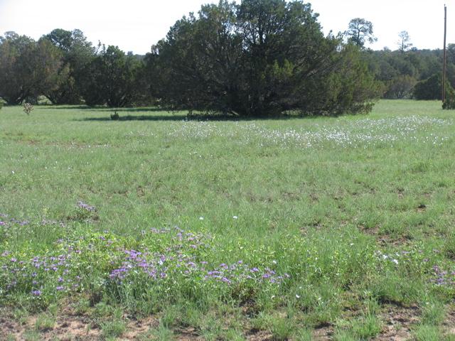 1,430 acres8