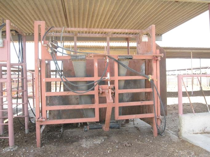 Buckeye Dairy9