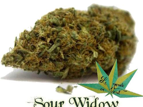 Sour Widow