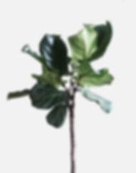 www.mariastoner.com