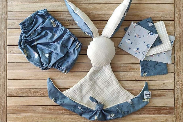 CR Creative - Pack blue dragon fly