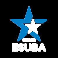 logo-esuba-CZC-t.png
