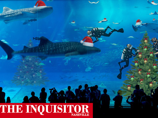 Tennessee Aquarium animals now decorated for Christmas