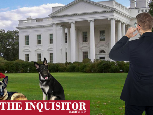 Biden dog placed on Secret Service watchlist after role in president-elect foot injury