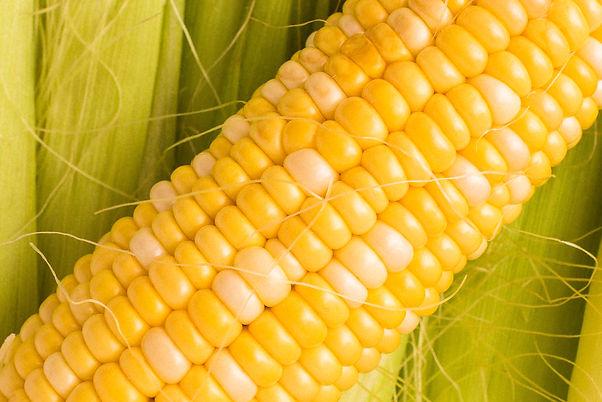 veggies Loving Spoonful180126133622.jpg