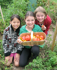 Girls with Tomatoes.png