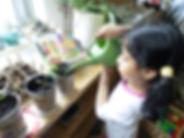 Little girl watering.jpg
