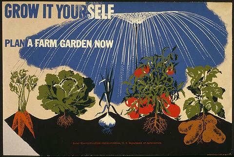Grow-it-Yourself.jpg