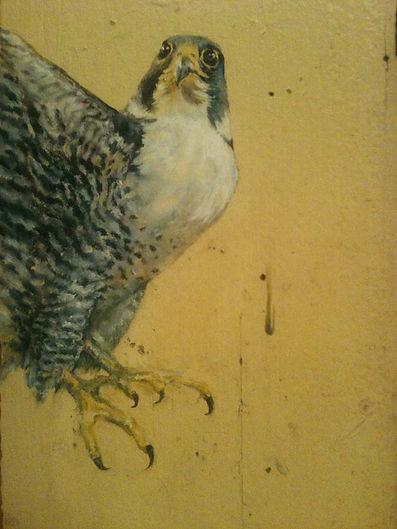 "oil/canvas   16"" x 24""  2014"