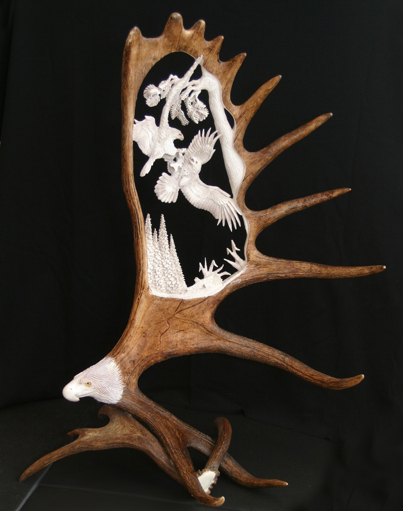 Shari Medley unique antler art