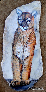original wildlife paintings,mountain lion paintings,handpainted rocks,wildlife art