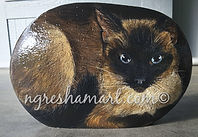 handpainted rocks siamese cat