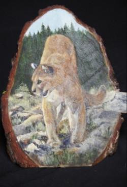 Cougar on wood by Debbie Barnett