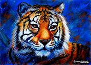 original wildlife art,tiger,pastel/colored pencil art