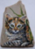 custom pet portraits,handpainted rocks,calico kitten paintings