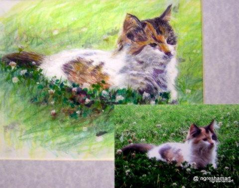 pet portraits- cat/ watercolor/colored pencil