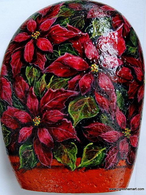 Pretty Poinsettia flowers in a terra cotta pot