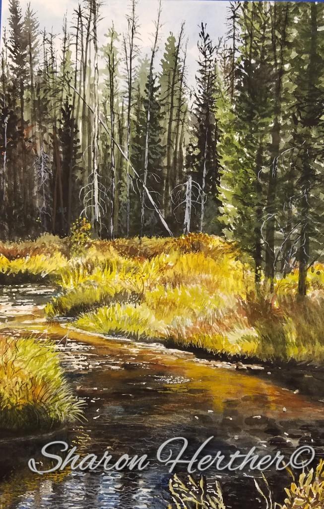 web photos sharon herther Lake Fork Cree