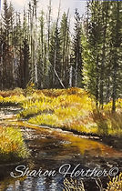 Lake Creek Idaho paintings for sale