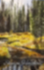 Lake Fork Creek Idaho paintings for sale
