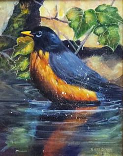 bird in my pond ngresham