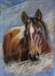 original horse art,colored pencil art,beautiful horse paintings
