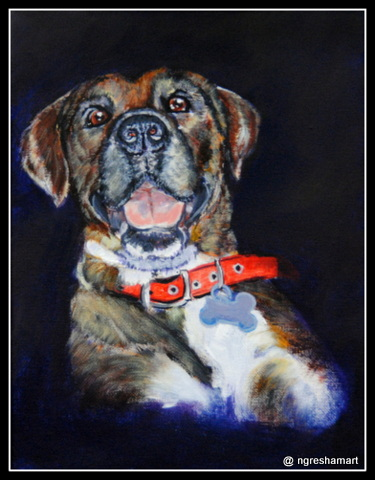 pet portraits- dog/ acrylic on canvas, commission