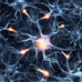 Neuroplasticity – a big word with bigger implications