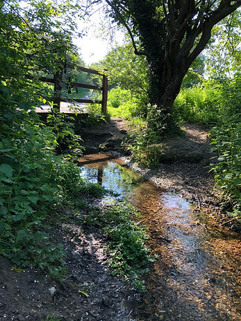 River walk.jpg