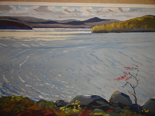 "PAPINEAU LAKE ONTARIO 12""x16"" ORIGINAL OIL PAINTING"