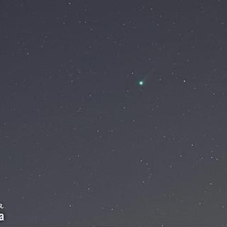 Cometa C/2020 FBSwan