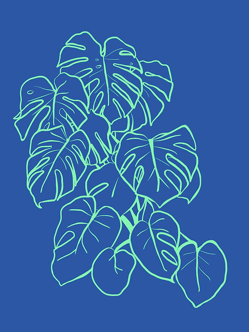 Monstera Digital Download