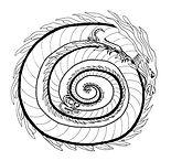 spirale, dragon divin, Shinryu, Waraku