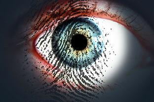 eye-319668_1280.jpg