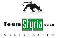 Team-Styria-Werkstaetten-Logo.jpg