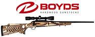 Boyds-Gunstock.jpg