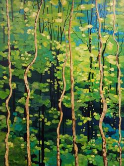 Secret Forest 36 x 48