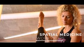 Centre for Spatial Medicine Workshops