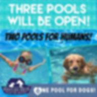 bbq pools.jpg